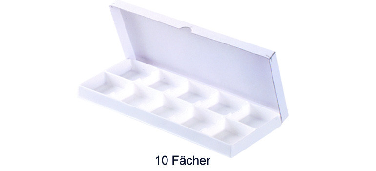 Thermo-Karton 10 Fächer